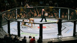 UFC-Octagon